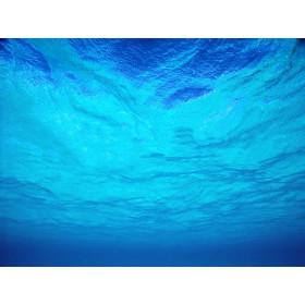 Arôme Menthe bleue